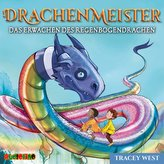 Drachenmeister 10: Das Erwachen des Regenbogendrachen