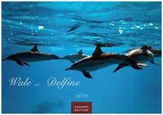 Wale und Delphine 2022 - Format L