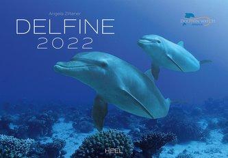 Delfine 2022