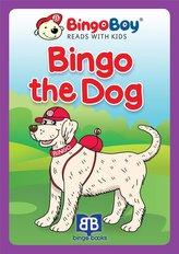 Bingo the Dog