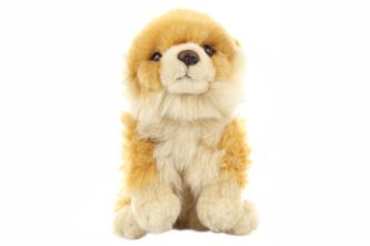 Plyš Pes Pomeranian