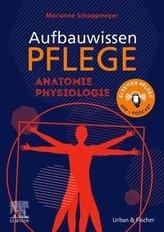 Aufbauwissen Pflege Anatomie