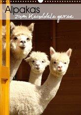 Alpakas zum Knuddeln gerne (Wandkalender 2022 DIN A3 hoch)