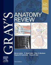 Gray\'s Anatomy Review