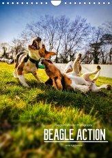 Beagle Action - Wilde Kuscheltiere (Wandkalender 2022 DIN A4 hoch)
