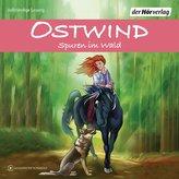 Ostwind - Spuren im Wald