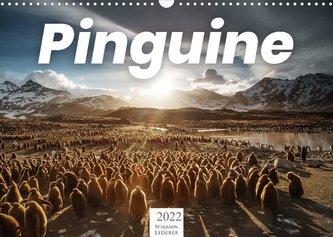 Pinguine - Die sympathischen Frack-Träger (Wandkalender 2022 DIN A3 quer)