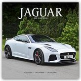 Jaguar 2022