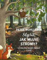 Slyšíš, jak mluví stromy? - Co všechno můžeš objevit v lese