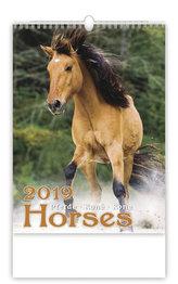 NK19 Koně