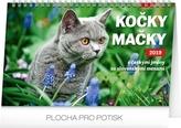 SK19 Kočky – Mačky CZ/SK 2019