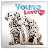 Poznámkový kalendář Young Love 2019, 30