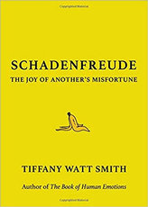 Schadenfreude: The Joy of Another´s Misf