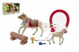 Kůň fliška s hříbětem a doplňky v krabici 36x21x8cm