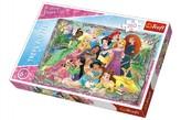Puzzle Princezny 260 dílků 60x40cm v krabici 40x27x4cm