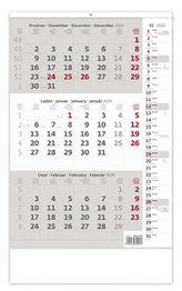 Kalendář nástěnný 2020 - Tříměsíční šedý s poznámkami