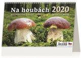 Kalendář stolní 2020 - Na houbách