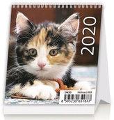 Kalendář stolní 2020 - Mini Kittens