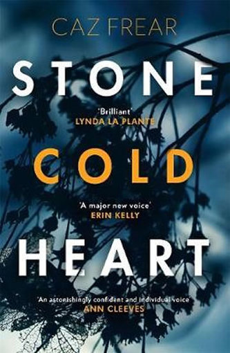 Stone Cold Heart : the addictive new thriller from the author of Sweet Little Lies