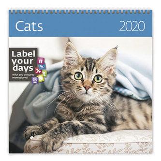 Kalendář nástěnný 2020 - Cats