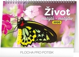 Stolní kalendář Život motýlů – motýlov 2020