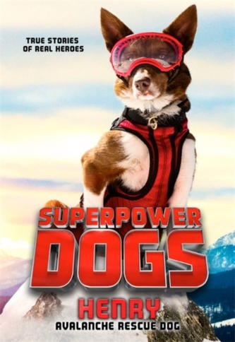 Superpower Dogs: Henry