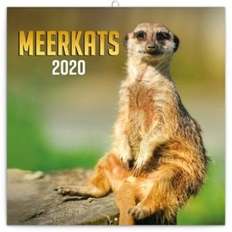 Poznámkový kalendář Surikaty 2020