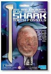 Kostra - žralok fosforeskující