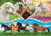 Puzzle Krásní koně