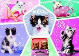 Puzzle Roztomilá koťata