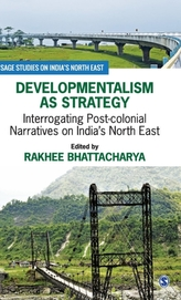 Developmentalism as Strategy