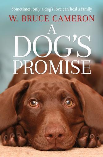 A Dog´s Promise