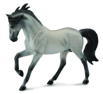 Andaluský kůň - šedivý