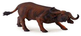 Býk africký