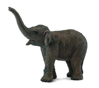 Slon asijský - slůně