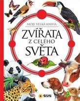 Zvířata z celého světa