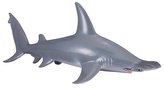 Žralok kladivoun