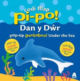 Codi Fflap Pi-Po! dan y Dwr / Pop-Up Peekaboo! Under the Sea