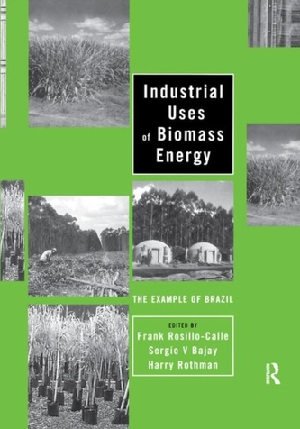 Industrial Uses of Biomass Energy