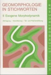 Exogene Morphodynamik. Abtragung, Verwitterung, Talbildung und Flächenbildung