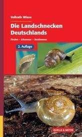 Die Landschnecken Deutschlands