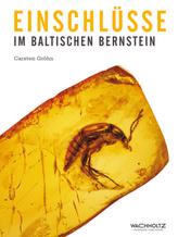 Einschlüsse im baltischen Bernstein