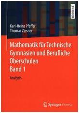 Mathematik für Technische Gymnasien und Berufliche Oberschulen. Bd.1
