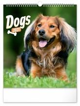 Kalendář 2021 nástěnný: Psi, 30 × 34 cm