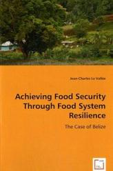 Achieving Food Security Through Food System Resilience