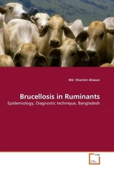 Brucellosis in Ruminants