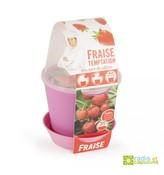 Zábavná zahrádka - Květináč Bell s jahodami