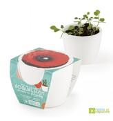 Mini zahrádka - Mini květináč Ceramic s mákem