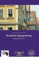 Bergheim (Spangenberg)