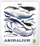 Nástěnný kalendář Animalium Lucie Jenčíková